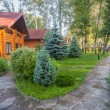 Holiday apartment - wooden cottage in forest — Stock Photo