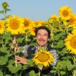 Farmer standing in a sunflower field — ストック写真