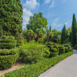 Garden landscape — Stock Photo