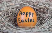 Makro çekim kahverengi yumurta — Stok fotoğraf