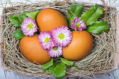 Easter eggs on the wooden table — Stock Photo