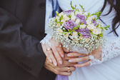 Bride and the groom showing their rings — Foto Stock