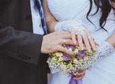 Bride and the groom showing their rings — Stock Photo