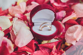 Image of wedding rings in a gift box — Stock Photo
