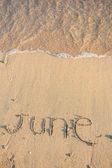 June on the sand — Stock Photo