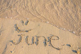 June on the sand — 图库照片