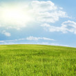 Green hill under blue cloudy sky — Stock fotografie #1726513