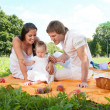 Happy Family picnicking in the park — Stock Photo #36459367