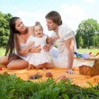 Happy Family picnicking in the park — Stock Photo #36459369