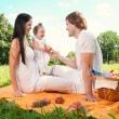 Happy Family picnicking in the park — Stock Photo #36459373