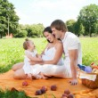 Happy Family picnicking in the park — Stock Photo #36459389