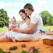 Happy Family picnicking in the park — Stock Photo #36459391