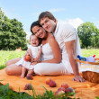 Happy Family picnicking in the park — Stock Photo #36459399