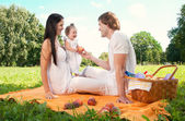 Famiglia felice, pic-nic nel parco — Foto Stock