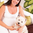Stock Photo: Happy pregnant woman with west highland white terrier relaxing o