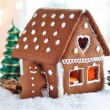 Gingerbread house — Stock Photo #27016849