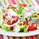 geleneksel Bulgar salata — Stok fotoğraf #27017033