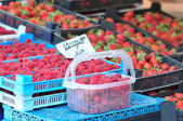 Raspberry on a farm stand — Stock Photo
