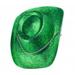 Green Carnival Hat Isolated - Stock Photo