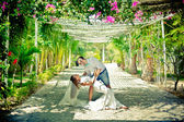Bride and groom in garden — Stock Photo