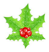 Christmas decoration holly berry branches isolated on white back — Stock Vector