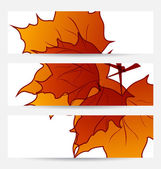 Set autumnal cards with maple leaves — Stock Vector