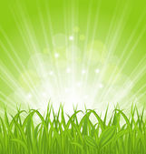 Spring background with green grass — Stock Vector