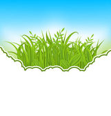 Nature card with green grass — Stock Vector