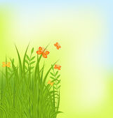 Summer background with grass and butterfly — Stock Vector