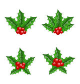 Christmas set holly berry branches isolated on white background — Stock Vector