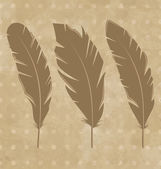 Set vintage feathers on grunge background — Stok Vektör