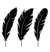 Set feathers isolated on white background — Stok Vektör