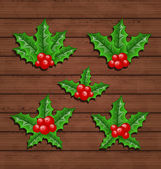 Christmas set holly berry branches on wooden background — Stock Vector