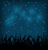 Night sky with grass field — Stockvector