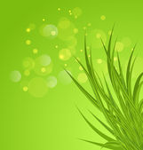 Spring background background with green grass — ストックベクタ
