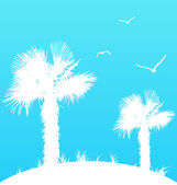 Summer background with palm trees and seagulls — Vector de stock
