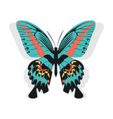 Vintage single colorful butterfly isolated on white background w — Stock Vector