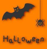 Cartoon bat and spider on orange background — Stock Vector