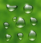 Kapky vody na čerstvý zelený list — Stock vektor