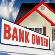 Bank Owned Foreclosure. — Stock Photo #12690559