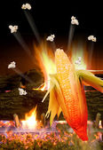 Corn Popping. — Stock Photo