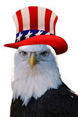 Uncle Sam Eagle. — Stock Photo