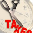 Cut taxes. - Stock Photo