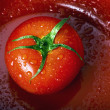Stock Photo: Tomatoe.