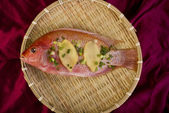 Fresh Red Snapper Fish. — Stock Photo