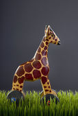 Wooden Toy Giraffe. — Stock Photo