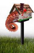 Octopus in your mailbox. — Stock Photo