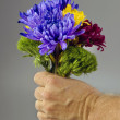Stock Photo: Flowers for you.