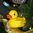 Stock Photo: Christmas Rubber Duck.