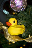 Christmas Rubber Duck. — Stock Photo